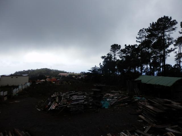 teren Madeira